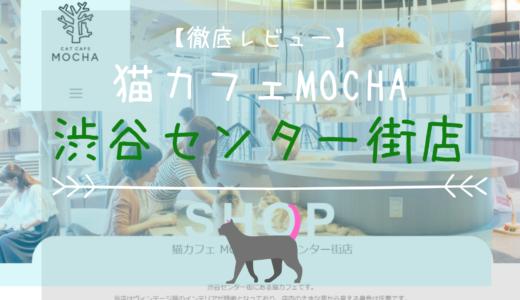 【徹底レビュー】猫カフェモカ 渋谷センター街店を体験レポート!