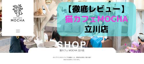 【徹底レビュー】猫カフェモカ 立川店を体験レポート!