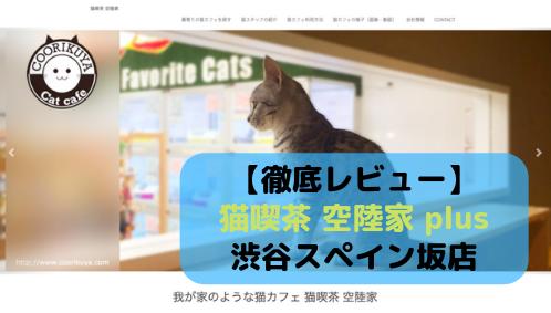 【徹底レビュー】猫喫茶 空陸家 plus 渋谷スペイン坂店を体験レポート!