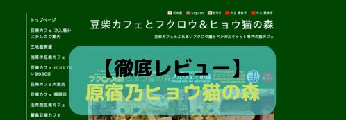 【徹底レビュー】原宿乃ヒョウ猫の森を体験レポート!(閉店)