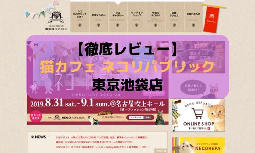 【徹底レビュー】猫カフェ ネコリパブリック 東京池袋店を体験レポート!