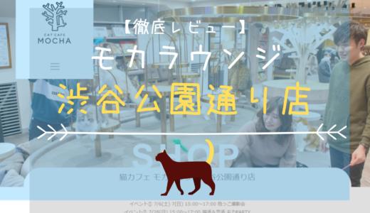 【徹底レビュー】猫カフェモカラウンジ 渋谷公園通り店を体験レポート!