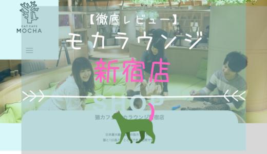 【徹底レビュー】猫カフェモカラウンジ 新宿店を体験レポート!