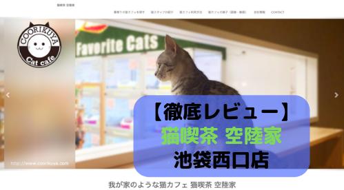 【徹底レビュー】猫喫茶 空陸家 池袋西口店を体験レポート!