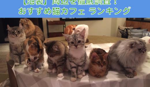 【厳選!】池袋でおすすめの猫カフェランキング!