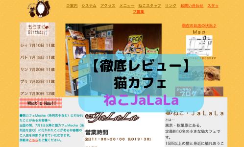【徹底レビュー】猫カフェ ねこJaLaLaを体験レポート!