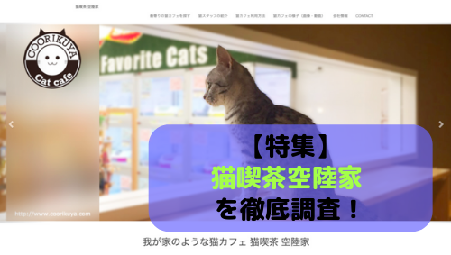 【特集】猫喫茶空陸家 を徹底調査!全店舗情報を網羅してお伝えします。